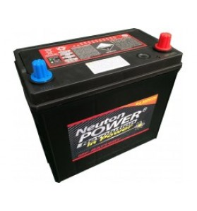 55B24L (small post) 12v 500cca Neuton Power Maintenace Free Battery